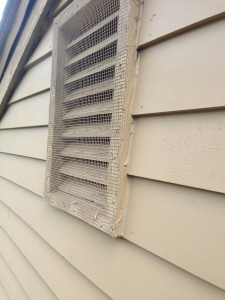 Wildlife Damage Repair with new vent cover